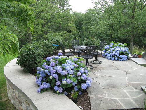 Lehigh Valley Planting Services