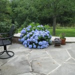 Millcreek Landscape Design backyard patio with beautiful trees, plants, flowers, and mulching