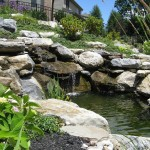 Millcreek Landscape Design backyard patio with beautiful trees, pond, plants, flowers, and mulching