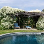 Millcreek Landscape Design backyard gazebo seating around with large white flowers covering