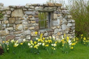 decorative stone wall with daffodils surrounding it