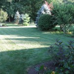 Millcreek Landscape Design large backyard with planting and mulching services