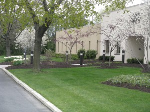 landscaped area of commercial building