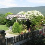 wood trellis overlooking mountain